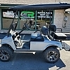 2010 CLUB CAR DS SILVER